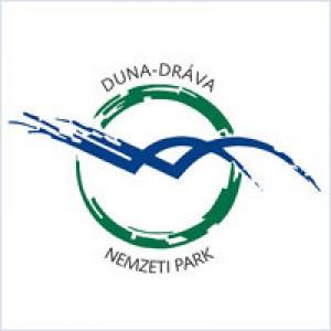 ddnpi logo